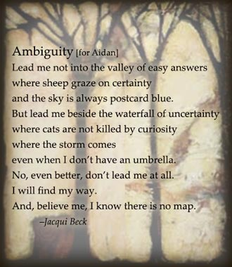 "Poem: ""Ambiguity,"" for Aiden. By Jacqui Beck."